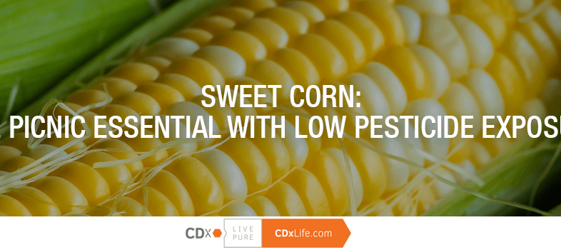 Sweet Corn: The Picnic Essential with Low Pesticide Exposure