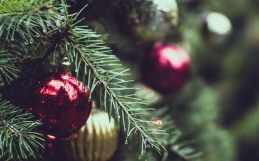 MDYX Christmas List!